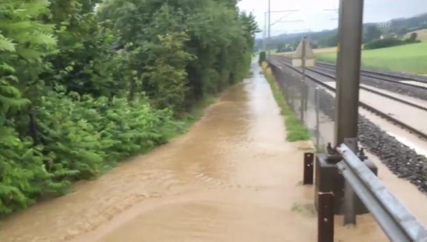 Video «Wassermassen in Nottwil (Michael Müller)» abspielen