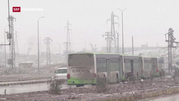 Video «Evakuierung Ost-Aleppos fortgesetzt» abspielen