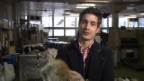 Video ««Einstein» entdeckt ... Gerberei» abspielen