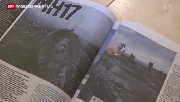 Video «Neue Hinweise zum Absturz der MH17» abspielen
