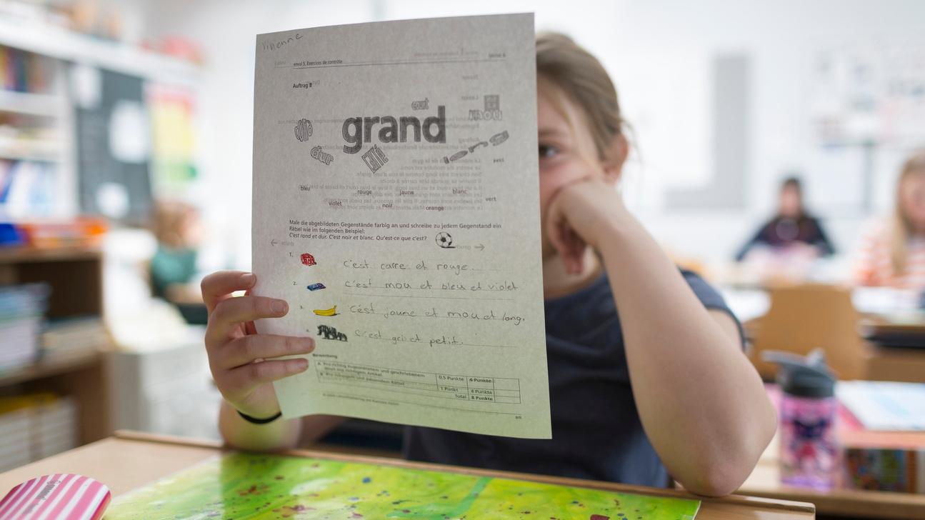 Wie weiter nach dem Thurgauer Sprachensignal