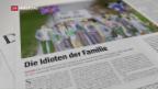 Video «Deutschland nimmt den Brexit persönlich» abspielen