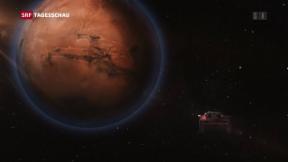 Video «Tesla-Gründer will Geschichte schreiben» abspielen