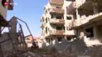 Video «Syrien: Sturm vor der Waffenruhe» abspielen