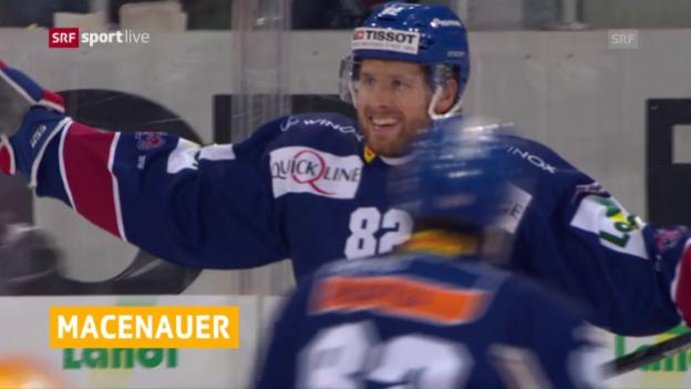 Video «Vorerst befristet: Macenauer verstärkt den SCB» abspielen