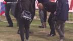Video «Fussball: Sion - Aarau verschoben» abspielen