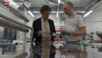 Video «Solargigant mit Schweizer Beteiligung» abspielen
