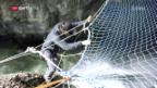 Video «Slackline in der Taminaschlucht: Das ist Kunst, Sport und Natur» abspielen