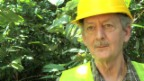 Video «Precious Woods: Der harte Weg in die Gewinnzone» abspielen