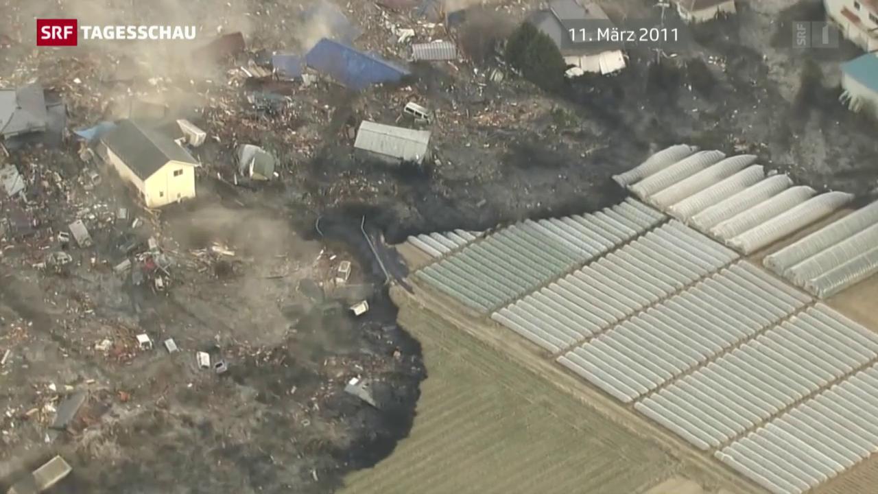 Problem-AKW Fukushima
