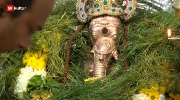 Video «Zum hinduistischen Ganesha-Fest» abspielen