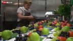 Video «Die Folgen für die Schweizer Wirtschaft» abspielen