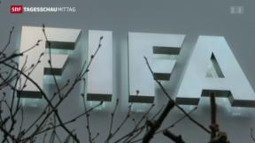 Video «Blatter spricht vor Fifa» abspielen