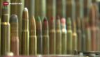 Video «Nationalrat sagt Nein zu einer Pflicht zur Waffenregistrierung» abspielen