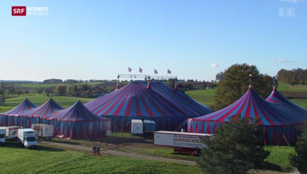 Video «Circus Monti beschreitet neue Wege» abspielen