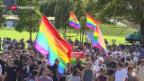 Video «Australien sagt Ja zu Homo-Ehe» abspielen
