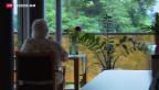 Video «Ergänzungsleistungen in der Kritik» abspielen