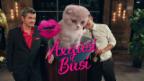 Video «Exgüsi Büsi - das Spiel» abspielen