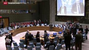 Video «Waffenruhe kurz vor Zusammenbruch » abspielen