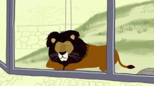 Video «Peek Zoo - Guet brüllt, Lotti» abspielen