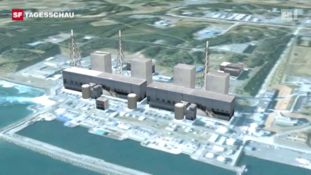 Fukushima - erste Erfolge. («Tagesschau», 19.3.11)