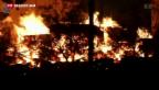 Video «Kurze Waffenruhe in Syrien» abspielen