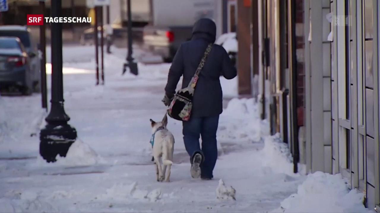 Eisige Kälte hat Nordamerika im Griff