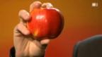 Video «Der perfekte Apfel aus der Schweiz» abspielen
