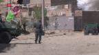 Video «Taliban wieder auf dem Vormarsch» abspielen