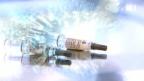 Video «Schweinegrippe-Impfung: Die Zeit wird knapp» abspielen