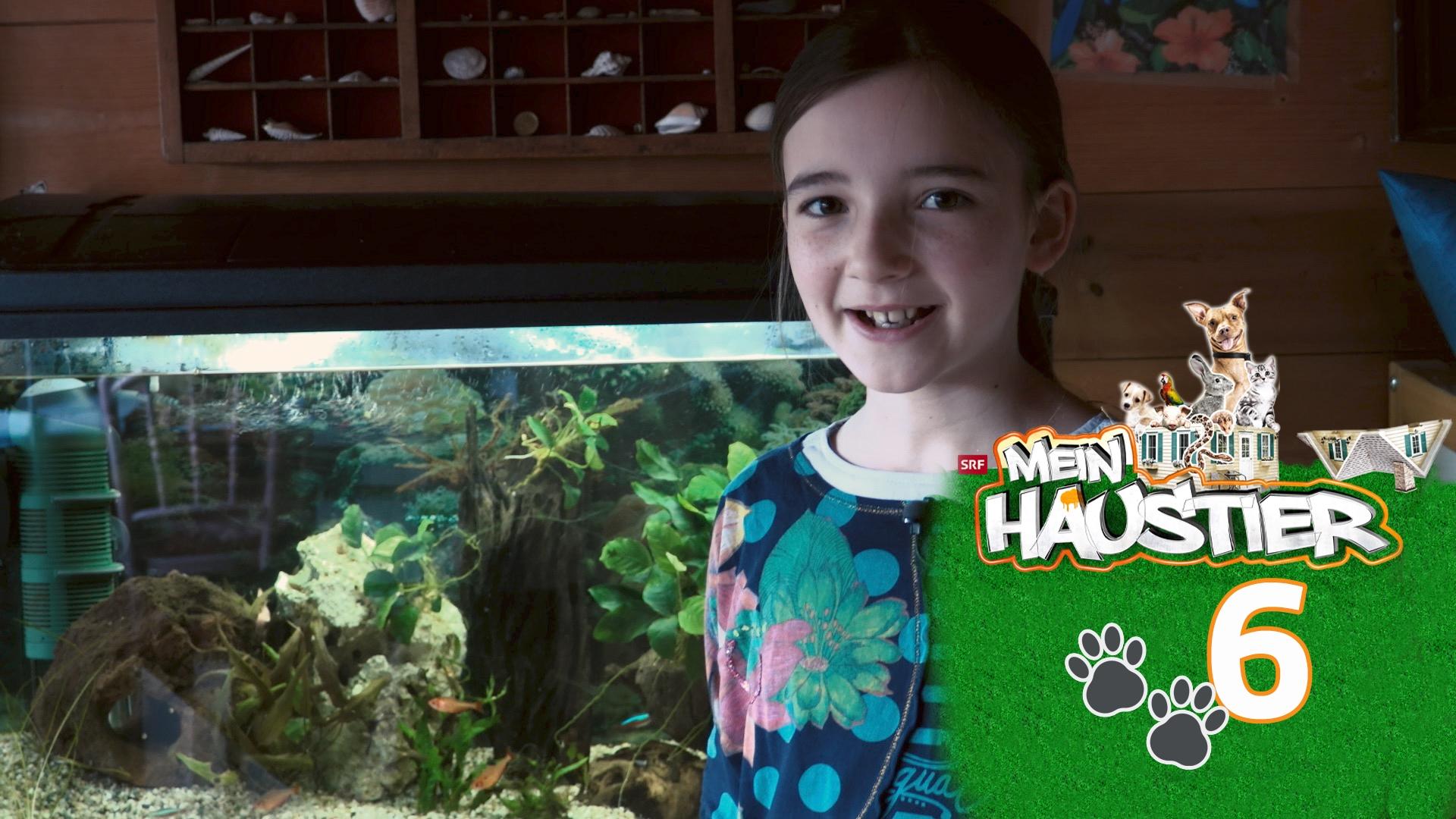 Coralie hat ein Aquarium voller Fische