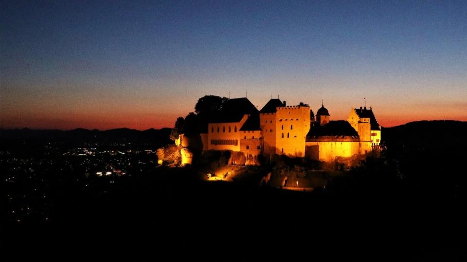 Eine tierfreundliche Schlossbeleuchtung, die dem Gesetz entspricht