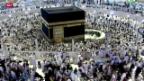 Video «Über 700 Tote bei Pilgerfahrt in Mekka» abspielen