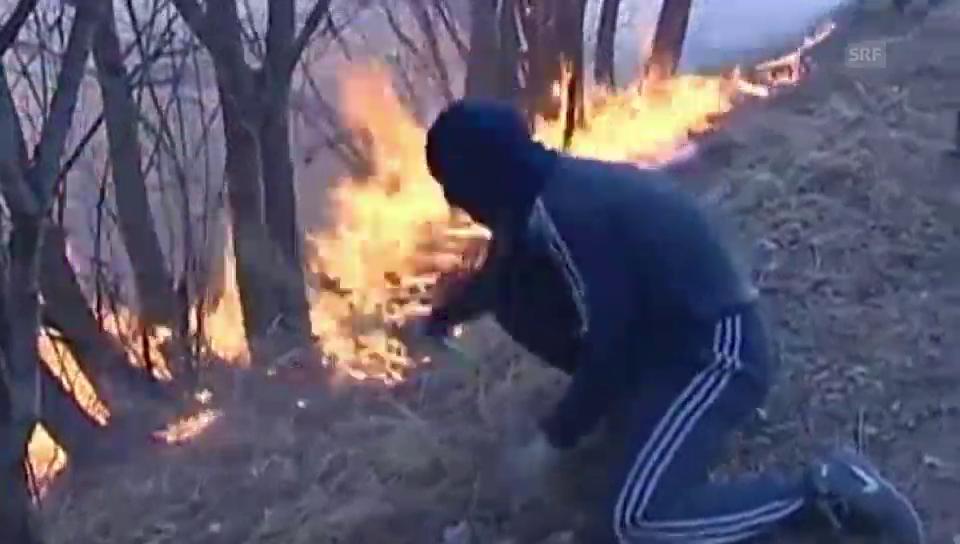 Verheerende Brände in Sibirien