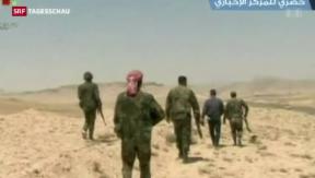 Video «Ein Drittel der Stadt Palmyra unter Kontrolle des IS» abspielen