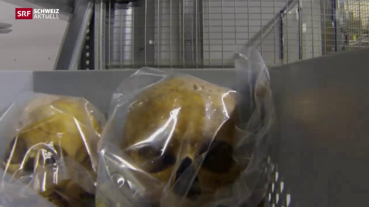 Totenschädel in Roboterhand