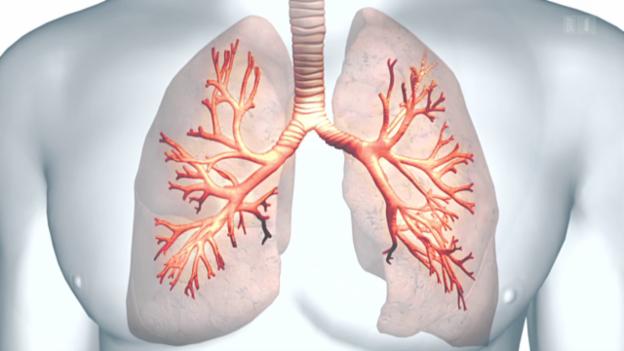 Video «Asthma - Umstrittene Methode soll helfen» abspielen