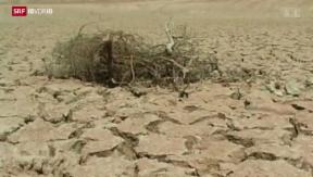 Video «Klimaalarm mit beschränkter Wirkung» abspielen