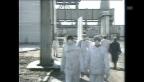 Video «Tödliche Räumungsarbeiten» abspielen