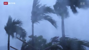 Video «Taifun kommt mit voller Wucht» abspielen