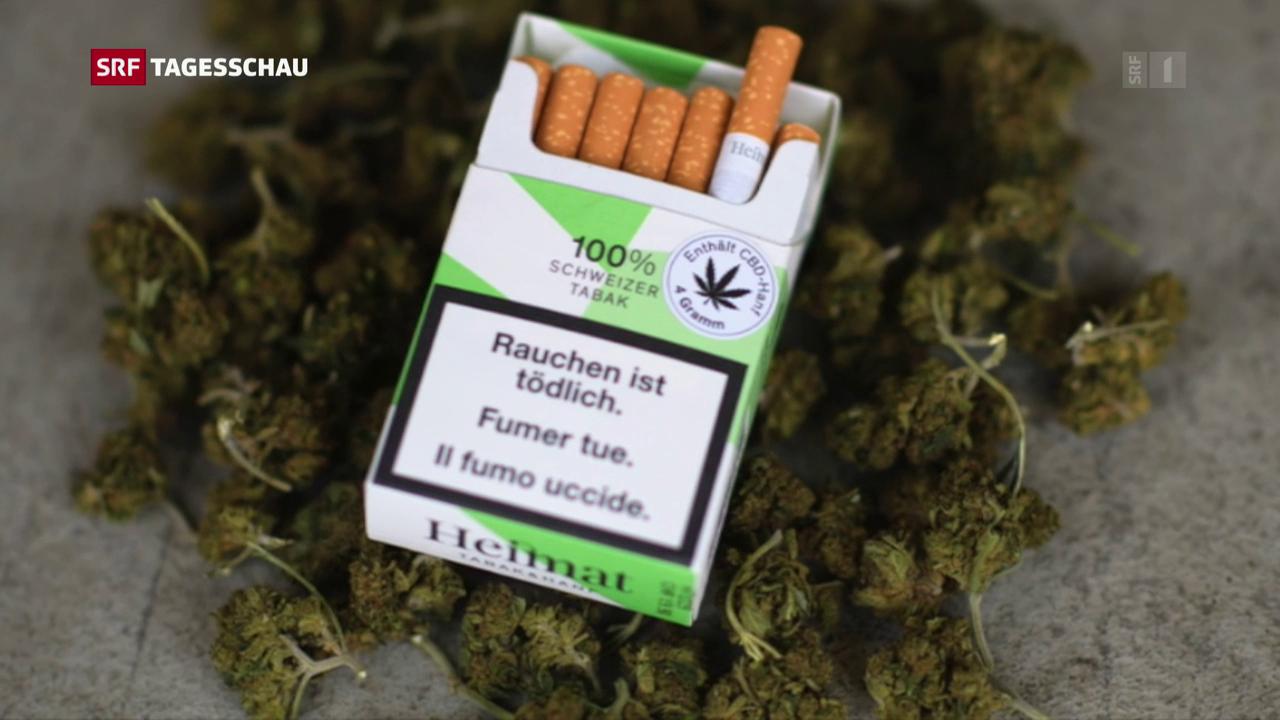 «Sucht Schweiz» fordert Cannabis-Strategie