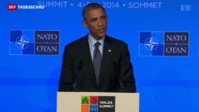 Video «Nato einig im Kampf gegen den IS» abspielen