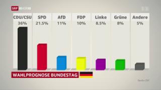 Video «Deutschland vor der Wahl» abspielen