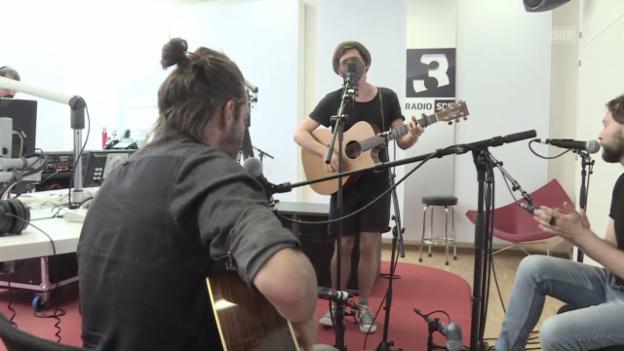 Video «Lovebugs «Land Ho!»» abspielen