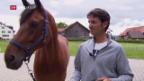 Video «Steve Guerdat, der Pferdeflüsterer» abspielen