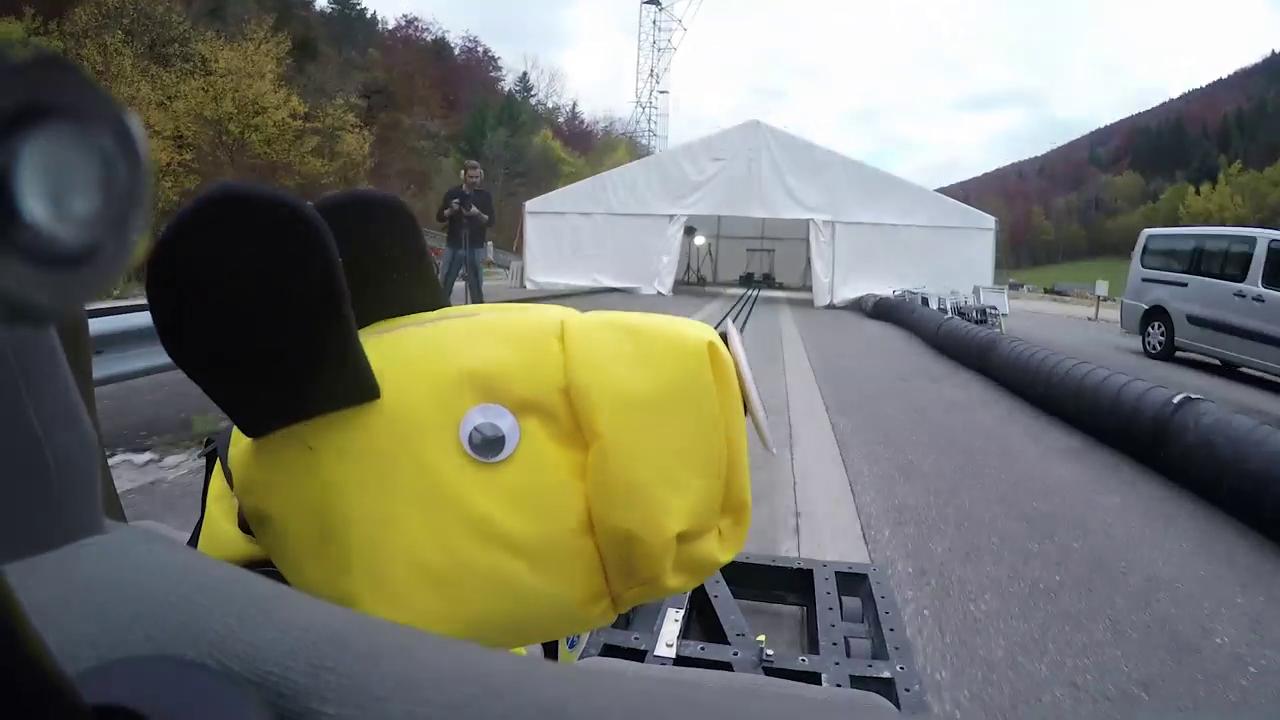 Der Test fand mit gelben Dummy-Hunden statt