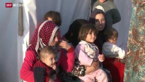 Video «Schweizer Politik streitet über Aufnahme syrischer Flüchtlinge» abspielen