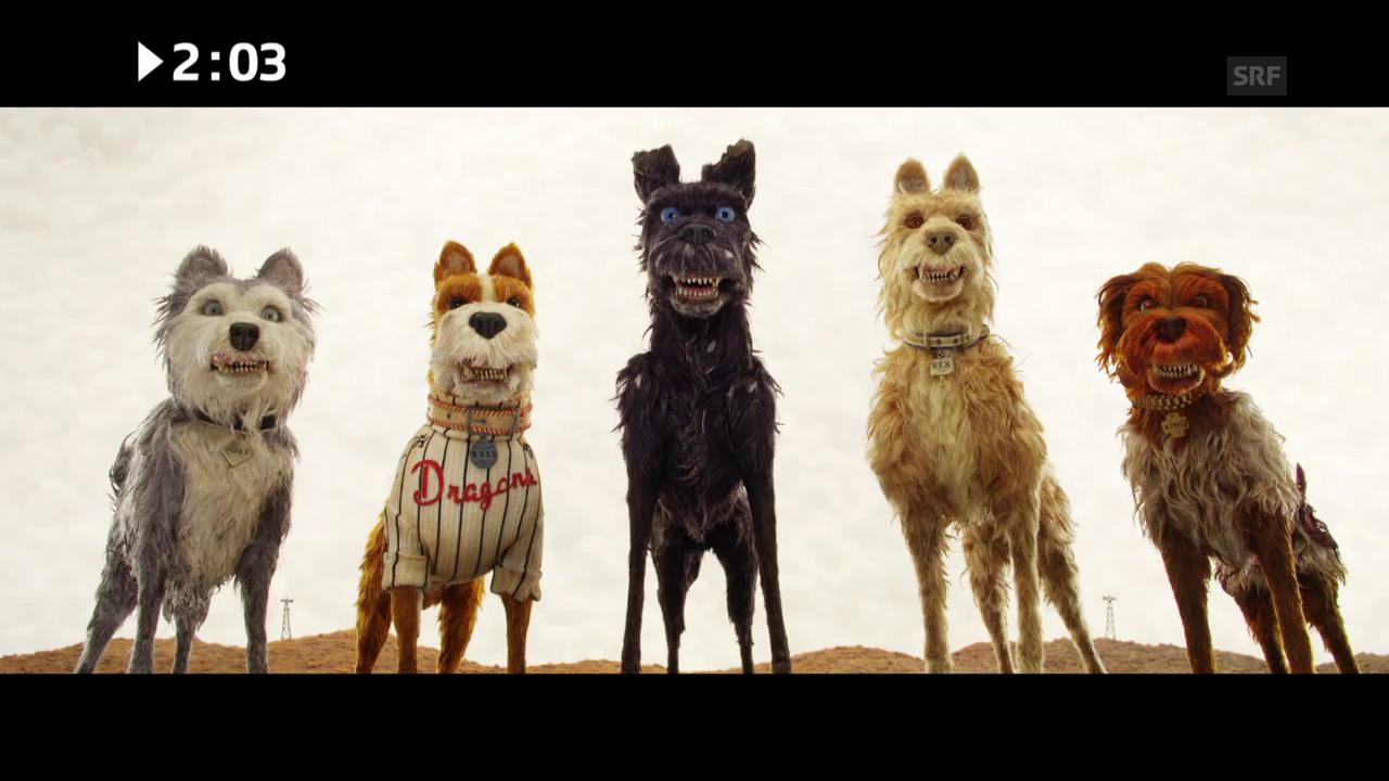 Kinostart diese Woche: «Isle of Dogs»