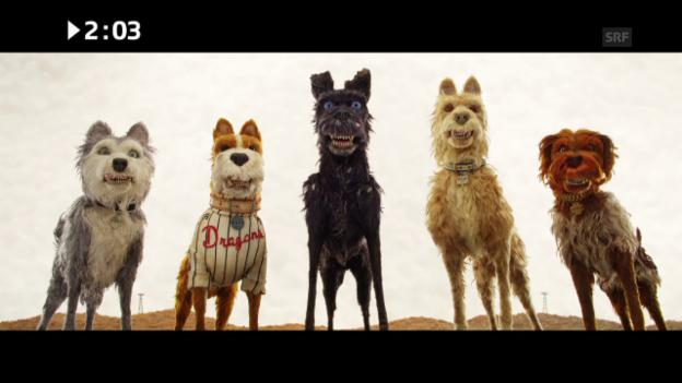 Video «Kinostart diese Woche: «Isle of Dogs»» abspielen