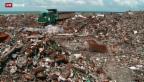 Video «Eine Paradies-Insel versinkt im Dreck» abspielen